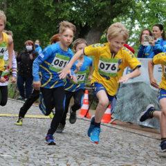 Zručský májový běh 2021 – 7. ročník, představí se také házenkáři Jiskry, soupiska